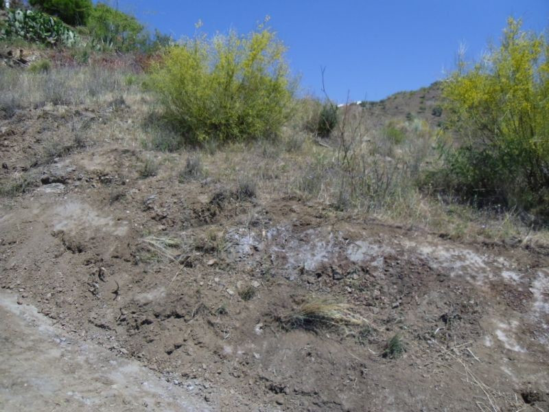This is a great plot of land for building one or more properties. The access is excellent along a co, Spain