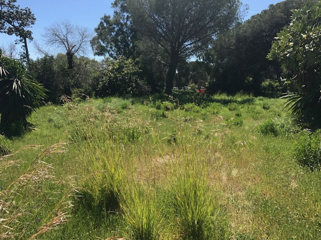 Fantastic opportunity! 2 plots together with building license in place to start the construction tom,Spain