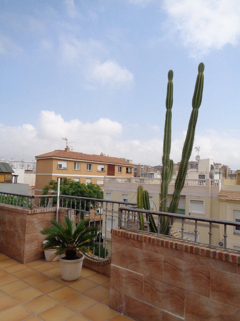 Fabulous duplex apartment in Huelin. This apartment has 3 bedrooms, one of which is doble, 2 bedroom, Spain