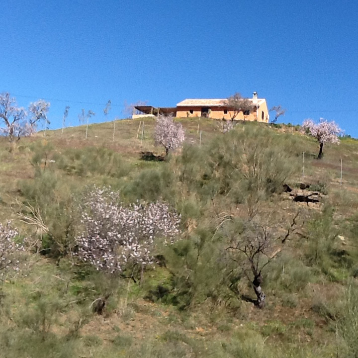Fully Reformed Hilltop Cottage Finca with 5600 square meters which is fully fenced.  The Cottage has,Spain