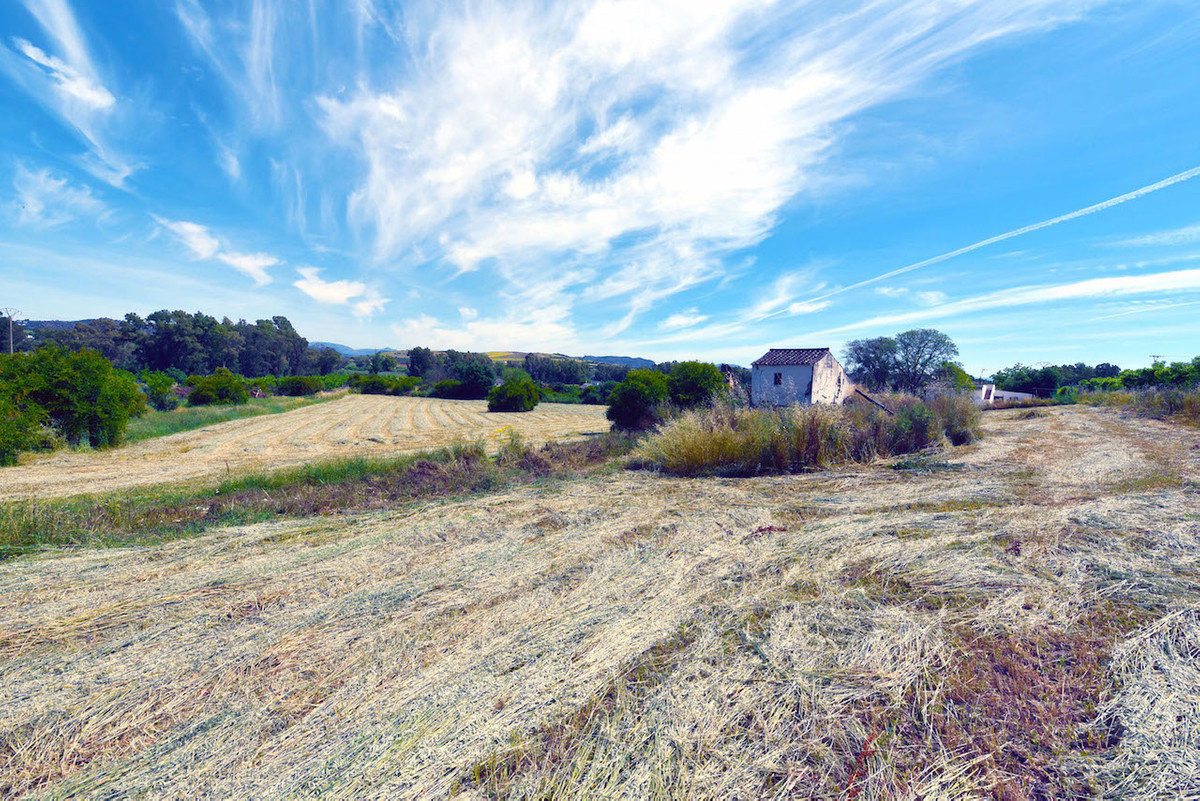 10,000 m² of Beautiful flat land very close to the Rio Grande river in Coin. Excellent for horses, f,Spain