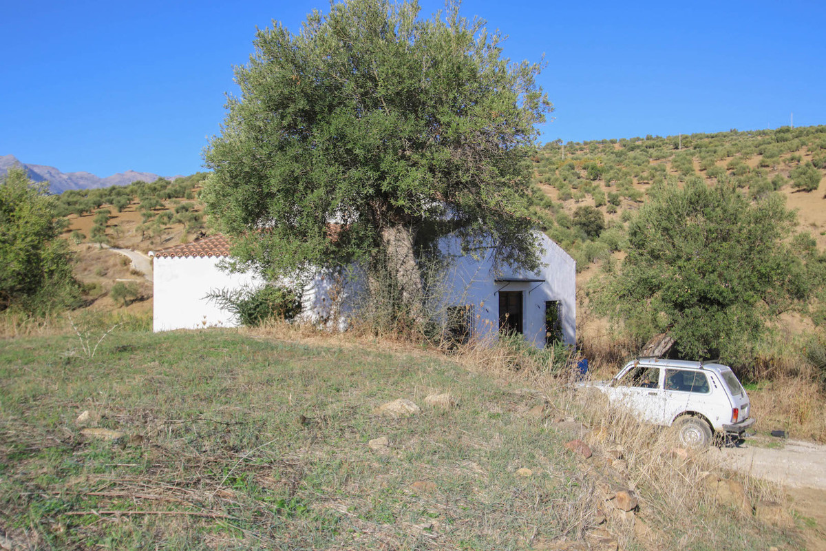 Welcome to the heart of the Andalusian countryside.  This finca will transport you to beautiful rura, Spain