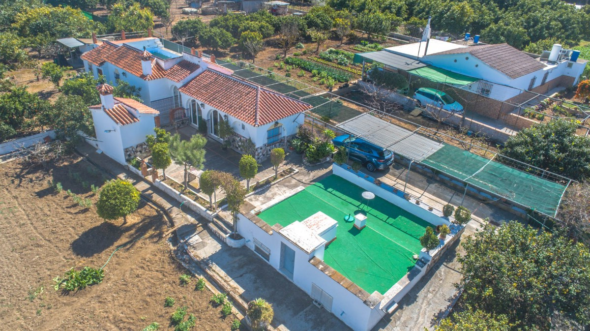 Beautiful finca in one floor in Alhaurin de la Torre with fruit trees and great plantation of avocad,Spain