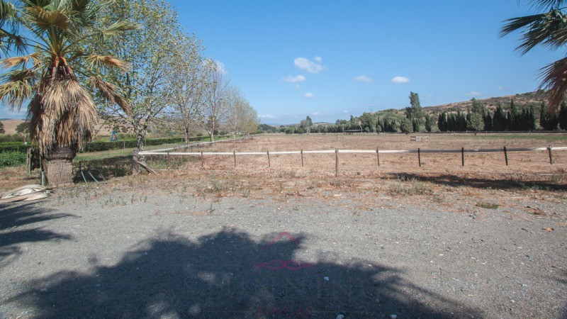 Beautiful finca for horse lovers,it is a dream come true. Built in perfect harmony with the environm,Spain