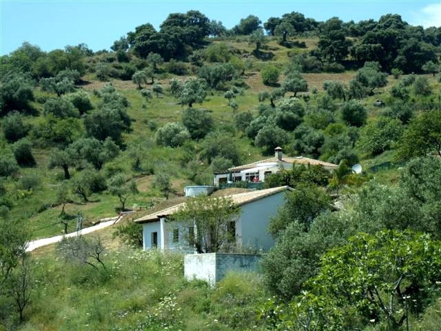 MASSIVE PRICE REDUCTION...........MAJOR REFORM REQUIRED. Excellent opportunity to reform a small rur,Spain
