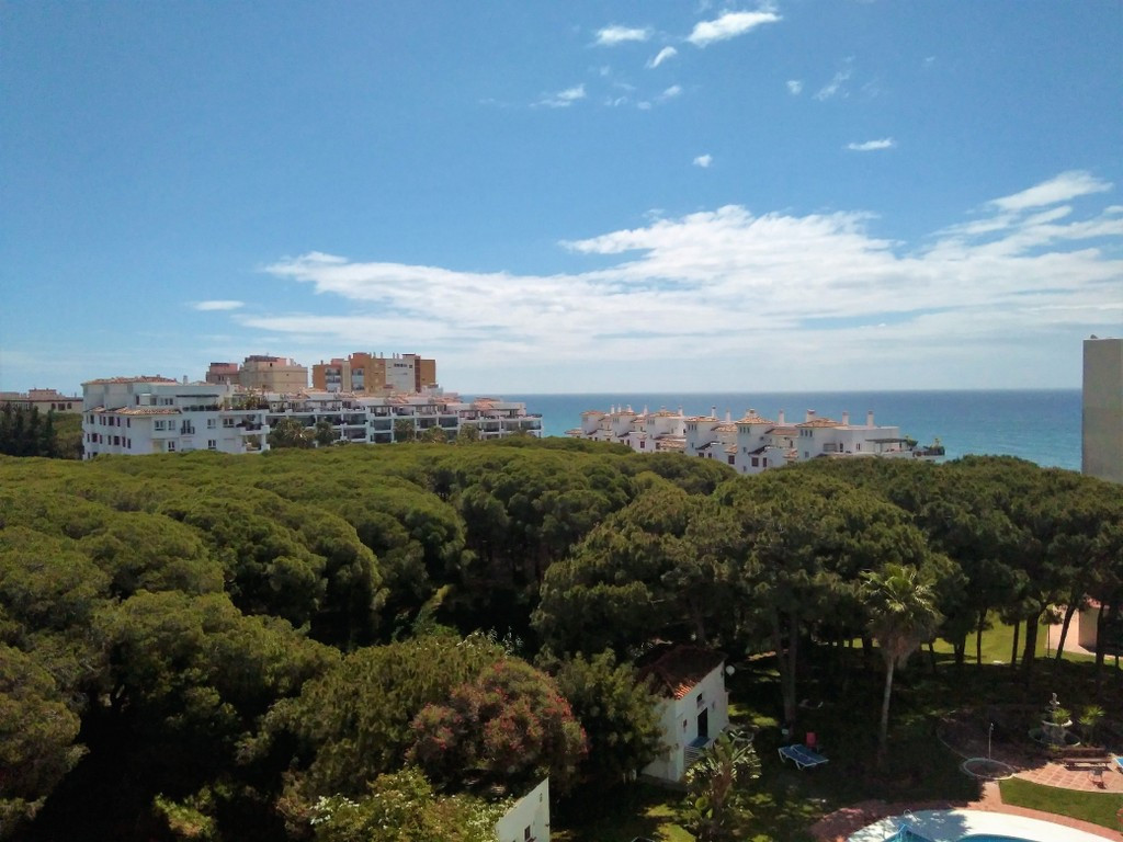 Fantastic opportunity, studio renovated, 50 meters from the beach, located in a building with a very, Spain