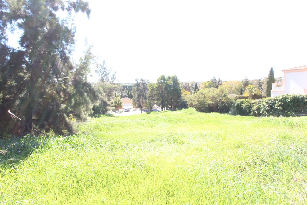 BEAUTIFUL PLOT located in Sotogrande Alto. The plot has 1,240 m2. It is a plot with slope, very appr,Spain