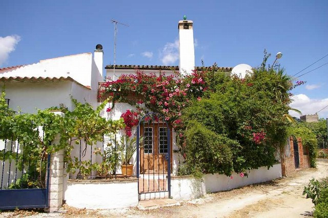 Traditional finca full of character with a courtyard and Fruit orchard plus garden with pond and a p, Spain