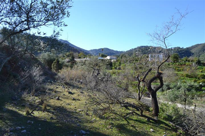 Superb Plot of land in Monda nr Marbella in a stunning green and vegative location only 18 km from t, Spain