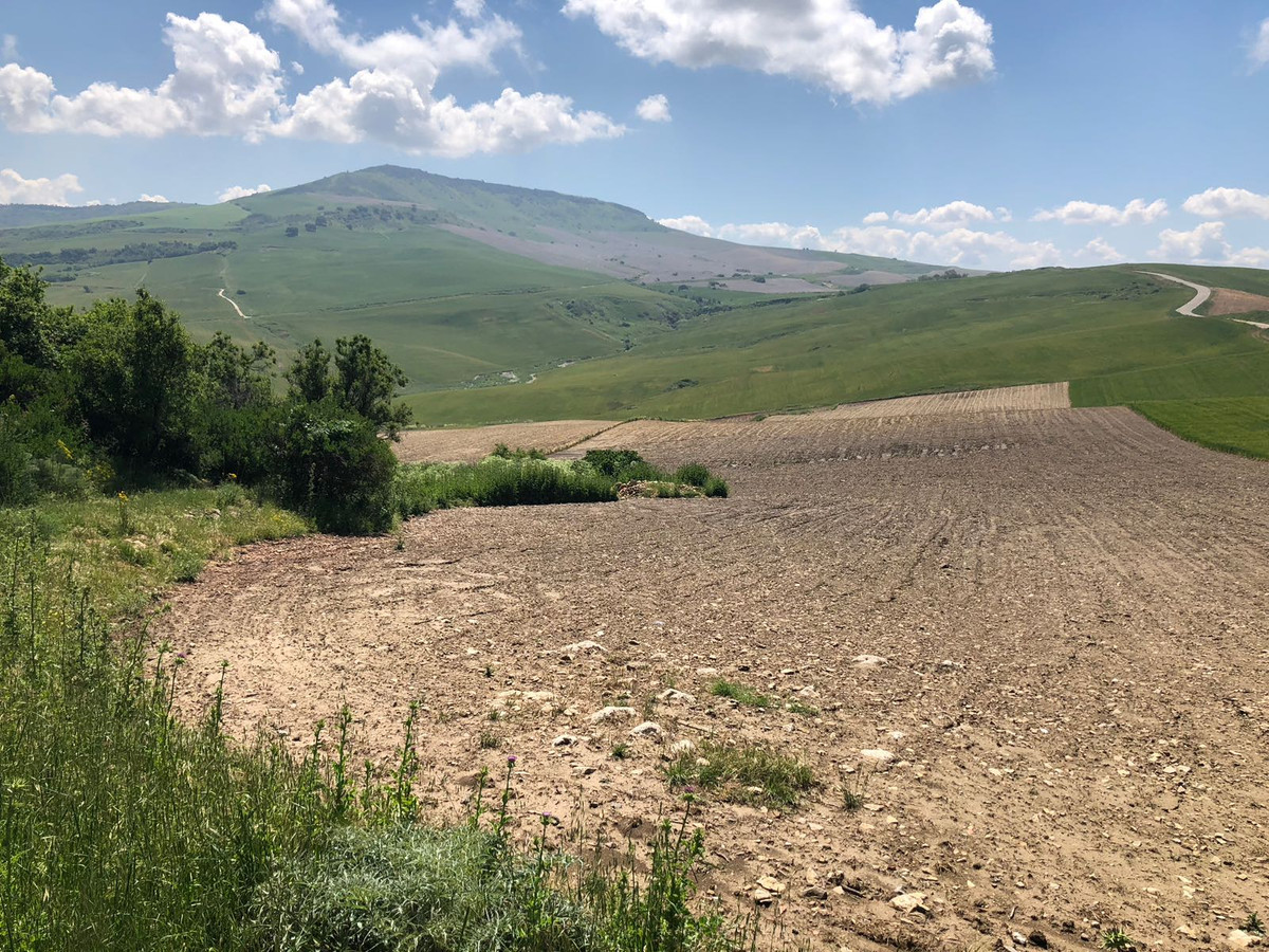 Plot in the area of Acinipo, perfect for your farm because ithas a perfect land for their farming.Th, Spain