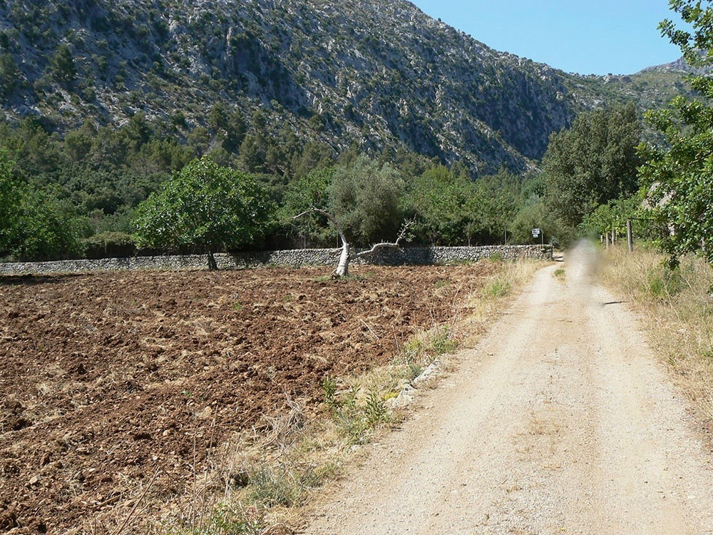 Size of the plot : 217. 234m2 of land, of which 52.024m2 can be used to develop the house. 165.211 m, Spain