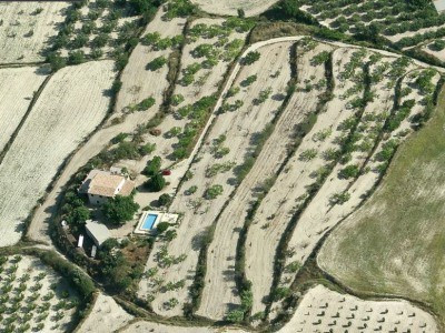 This finca was first built in the early 1900s but has been lovingly restored to become a very comfor,Spain