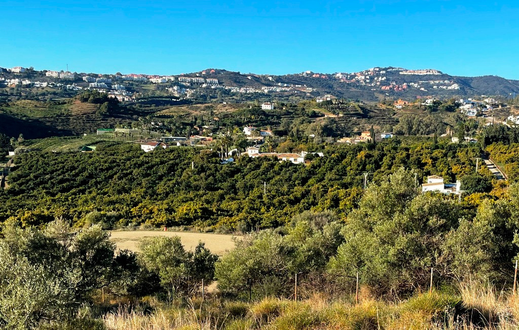Outstanding well producing farm with main villa, guest house and porter house only 5 minutes´ drive ,Spain