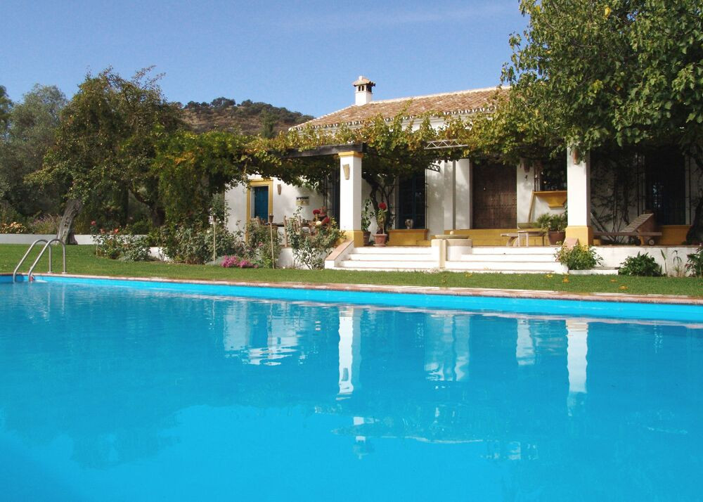 Wonderful country-property in Ronda. This finca-property lies amidst a gently sloping olive grove an, Spain