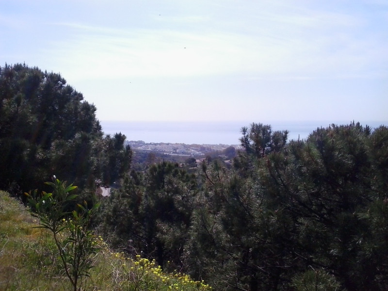 Great plot in Estepona, less than 30€/m2. 5000 m2 in rustic area. Amazing sea views. Facing to the s,Spain