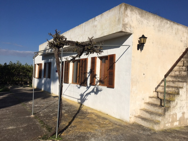 Rustic finca completely fenced, with good access, asphalted street has electricity and water, house ,Spain