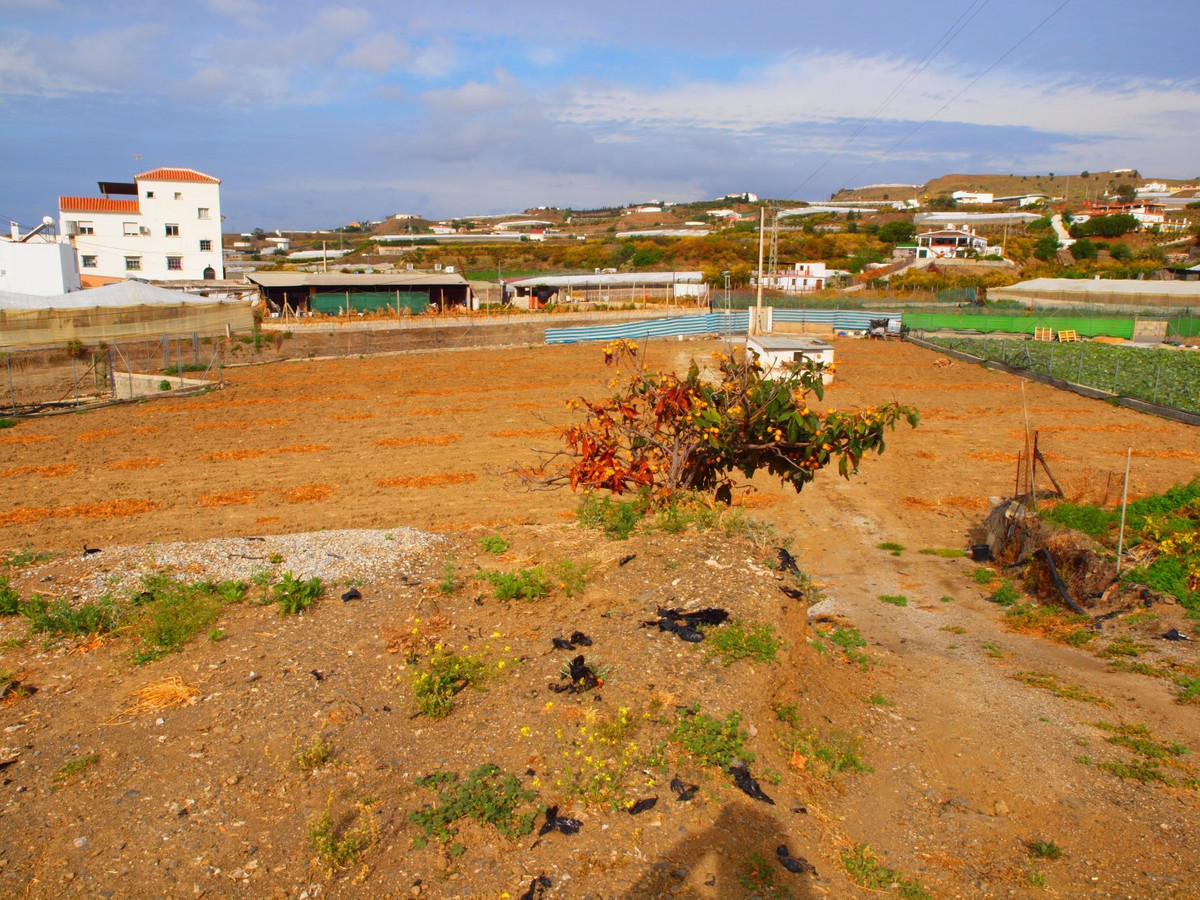Land rustico with sea view. There is an Apero to store tools of about 20 m2., Spain