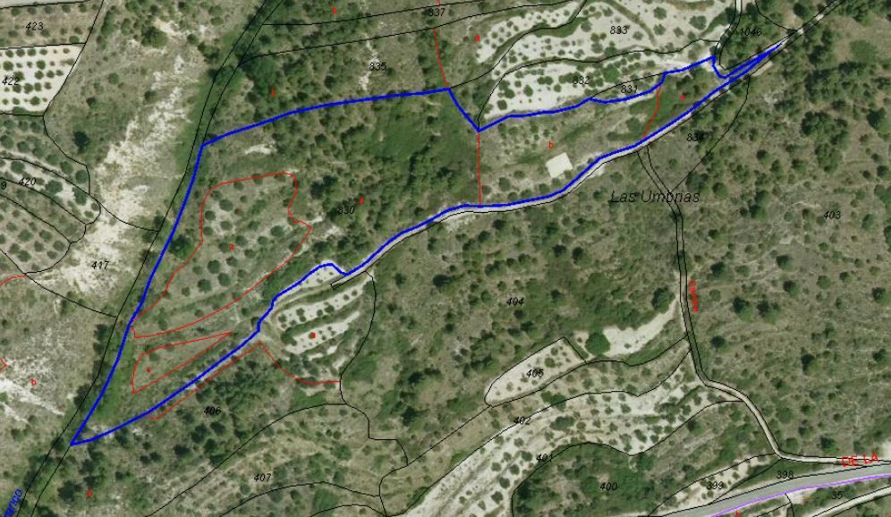 Plot of agricultural land 700m from the small mountain town of Almudaina. On various large levels wiSpain