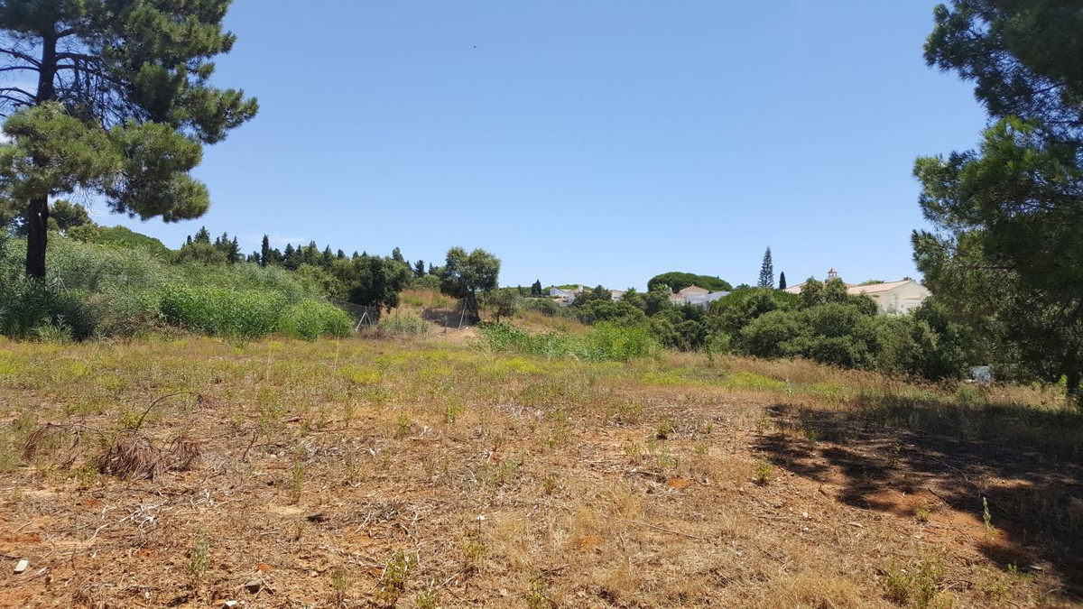 Plot of 2581m2 with license and project to build a villa., Spain