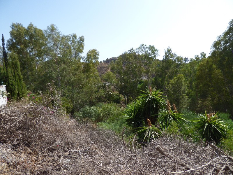 A WONDERFUL POSSIBILITY TO PURCHASE A FANTASTIC PLOT IN A VERY WELL ESTABLISHED AREA ON WALKING DIST,Spain