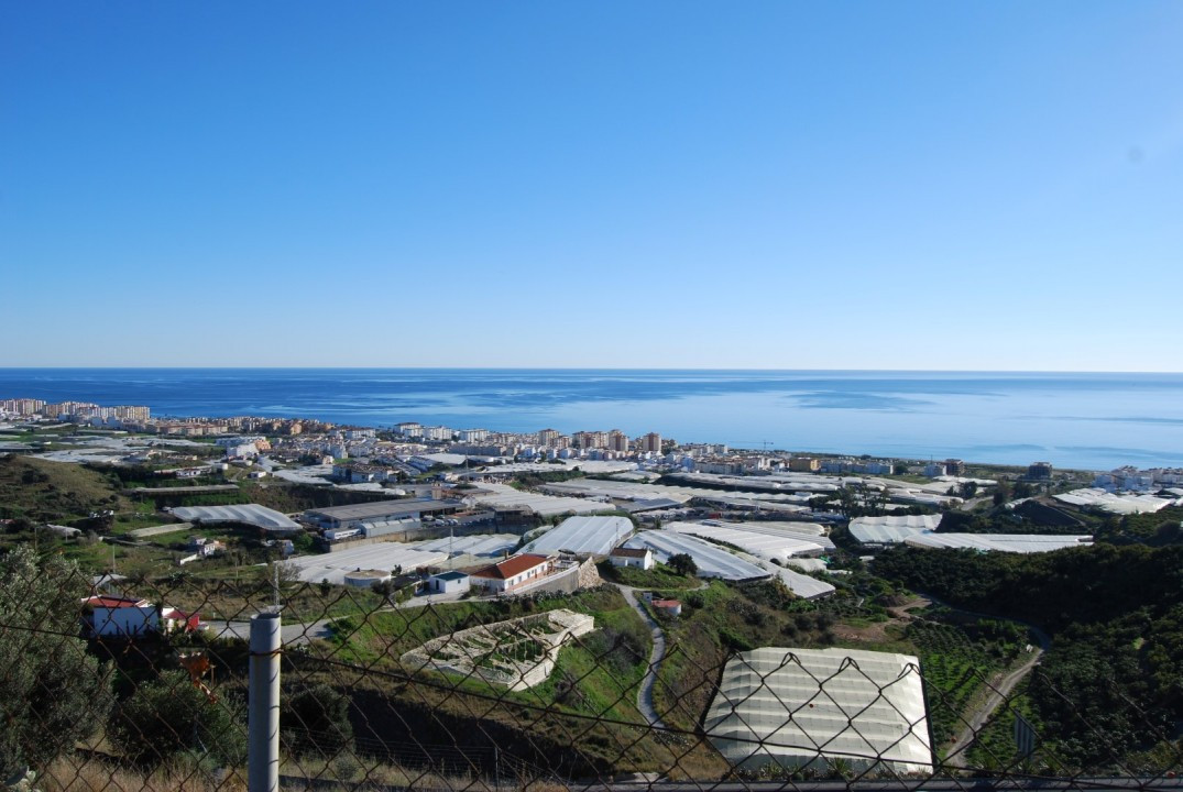 Mango plantation Torrox  Mango yard with large villa This totally fenced plot of approx. 33.000m2 pr,Spain