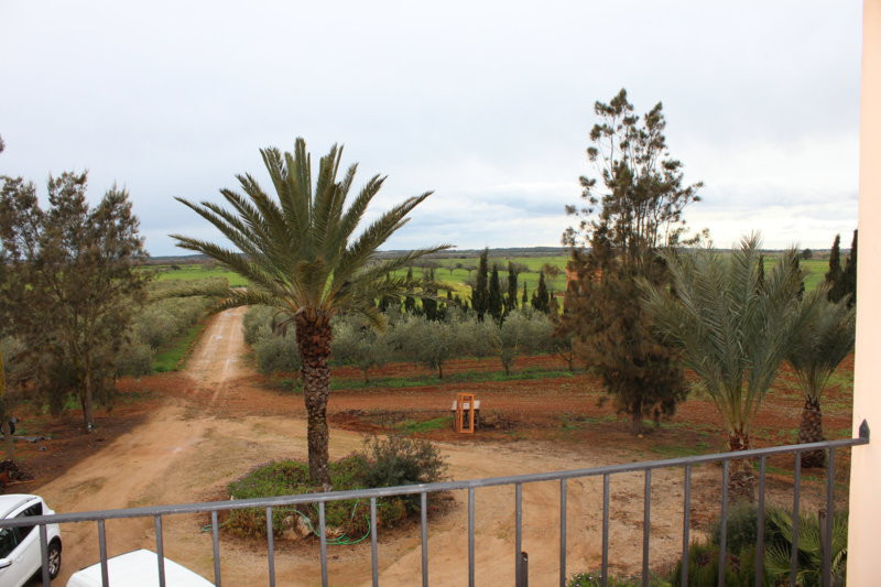 "For sale this fantastic estate of 12,500m2 of land, a few minutes from the beach ""Es Trenc&quot, Spain"
