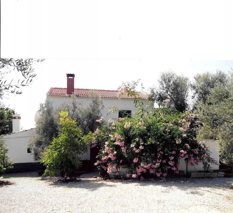 Pretty cottage, garden with fruit trees, fireplace, access pipeline, fantastic views, good access, g, Spain