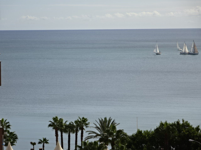 Magnificent apartment located in one of the most privileged areas of Malaga known as la Malaqueta.  , Spain