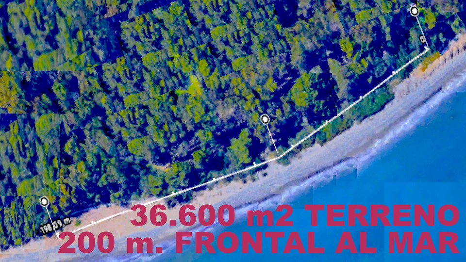 PROPERTY PERFECT FOR INVESTORS - 36,600 NEW GOLDEN MILE meters  Stunning oceanfront property with op,Spain