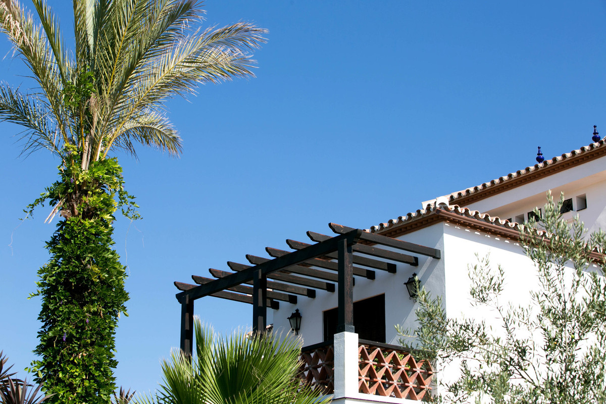 Wonderful villa set in a plot of 12,000 square meters with fruit trees, whose flower in spring makes,Spain
