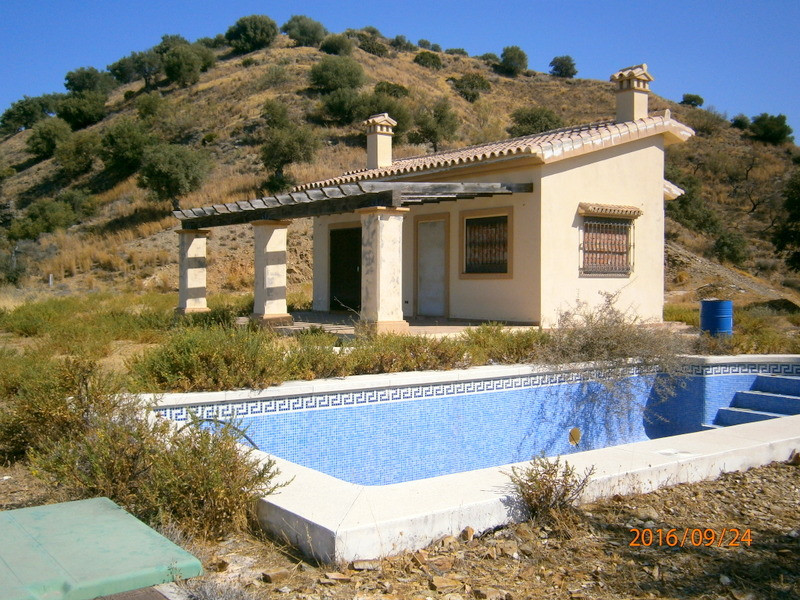Finca located in the campo in Coin, in the area of Cerro del Aljibe. 11.000 sqm of land. Olive oil t,Spain