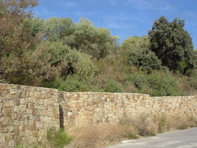 A building plot in Elviria, of 1.000 m2, you can built a villa of about 300 m2. Apply for building l, Spain