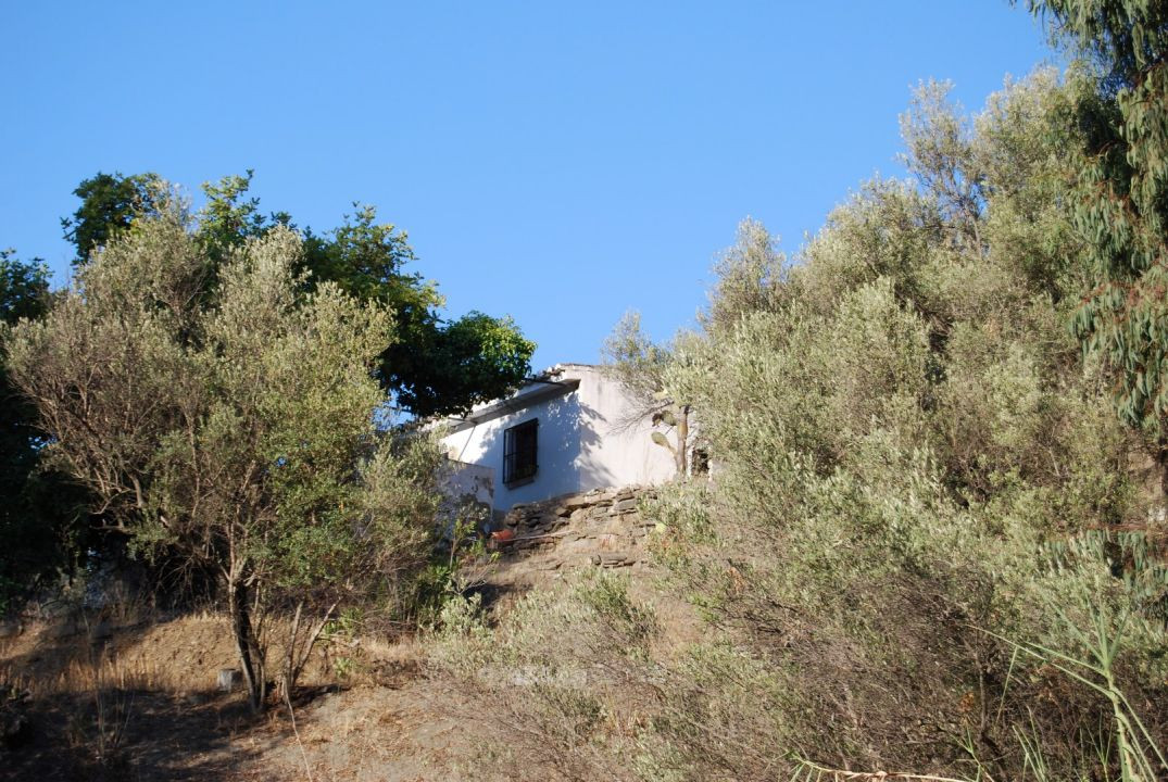 Finca Torrox  Finca with seaview to renovate Located on an elevated level with a plot of 6.900m2.  T,Spain