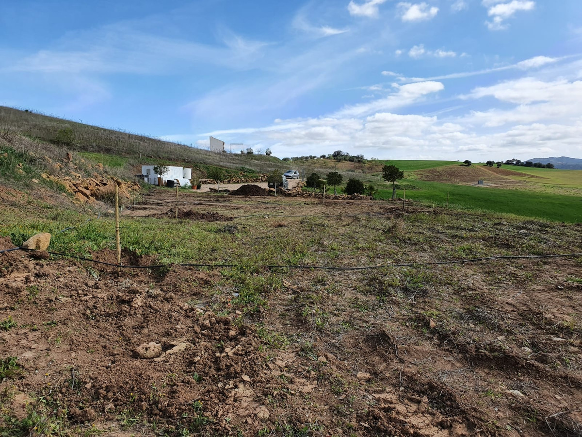 CASABERMEJA AT PARAJES LAS PENSIONES  1.5 km  from town,  for sale  a 3.280m2 fully fenced plot rust,Spain