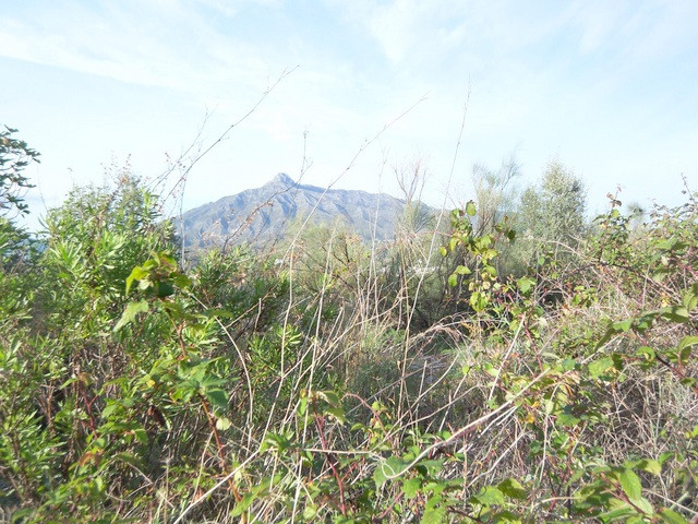 Walking distance to Puerto Banus. Plot of land with sea-views, 800 sqm. edificabilidad 25% means you,Spain