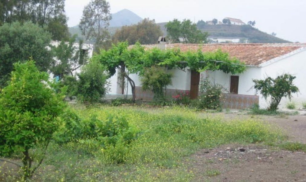 An opportunity to reform and extend this old finca, which is set in a large plot of land with views ,Spain