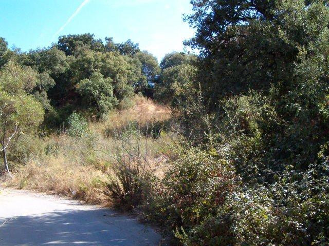 Plot - Land, Elviria, Costa del Sol. Garden/Plot 1000 m². Sold with proyect to built a house of 380m,Spain