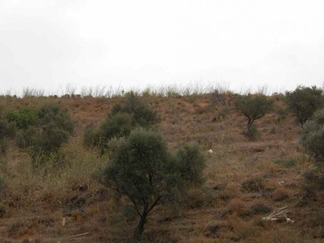 Originally listed for 165,000€ and recently reduced to 110,000€ to achieve a fast sale. Plot,  Good , Spain