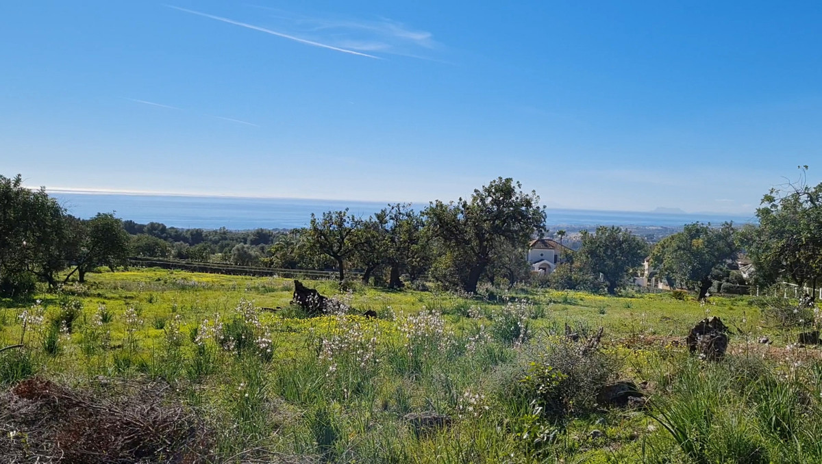 Plots for sale in Sierra Blanca, Marbella Golden Mile These plots of 23.375m2 in a gated and secure ,Spain