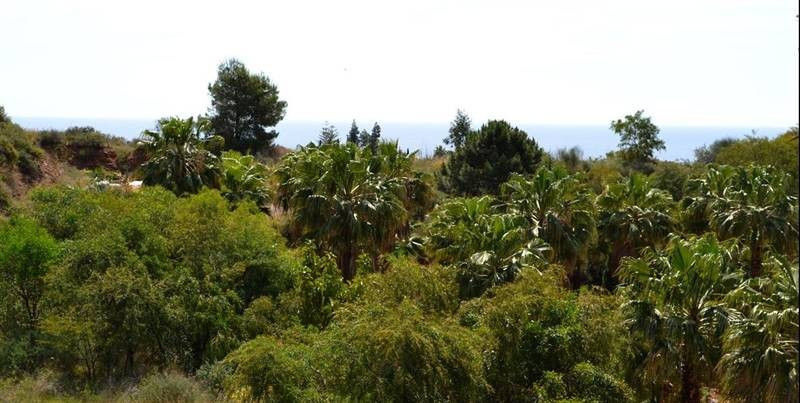 Fantastic building land for detached villas, situated in the prestigious residential area of Las Lom, Spain