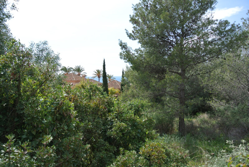 This 2100 m2 plot is situated in a tranquil and established area within the exclusive community Sier,Spain