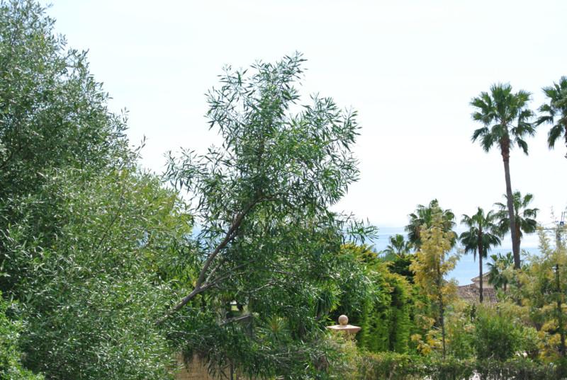 Se vende Terreno Urbano, Sierra Blanca – R2373281