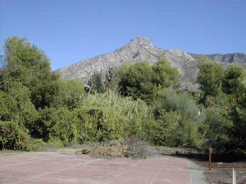 Plot for private use or for investment. The plot is flat and offers some sea and mountain views and ,Spain