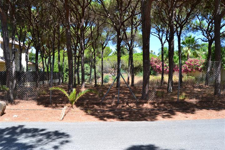 Plot - real estate in Las Chapas