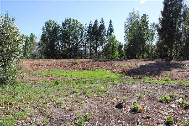 Plot in Sierra Blanca