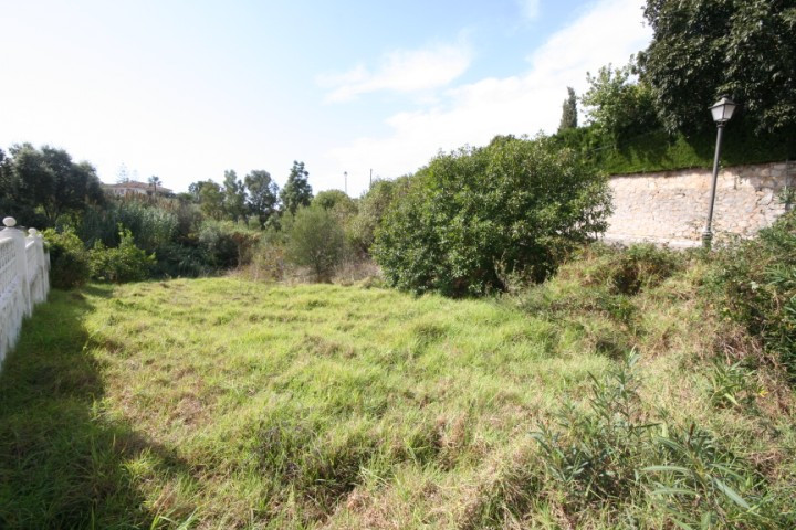 Plot in El Rosario