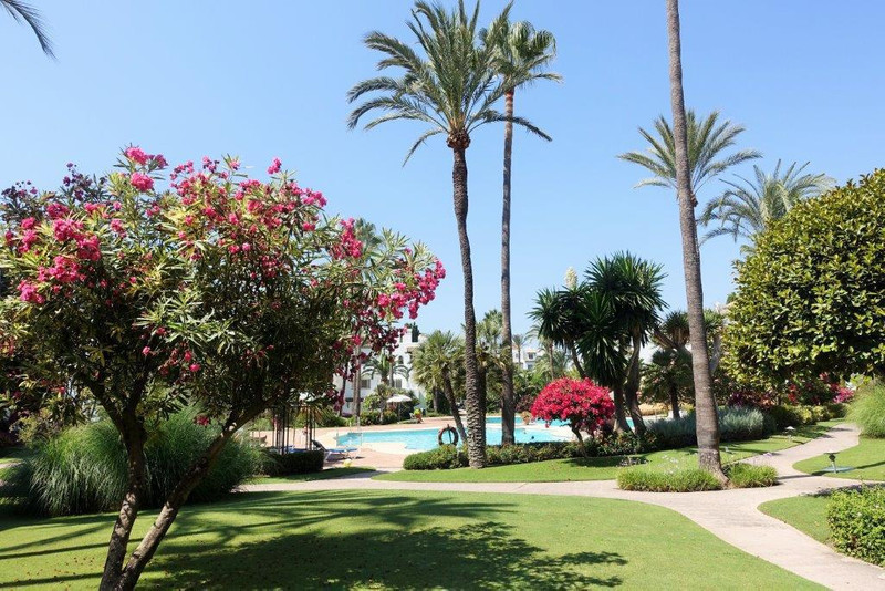 PROPERTY FOR SALE ALCAZABA BEACH (Estepona) 13