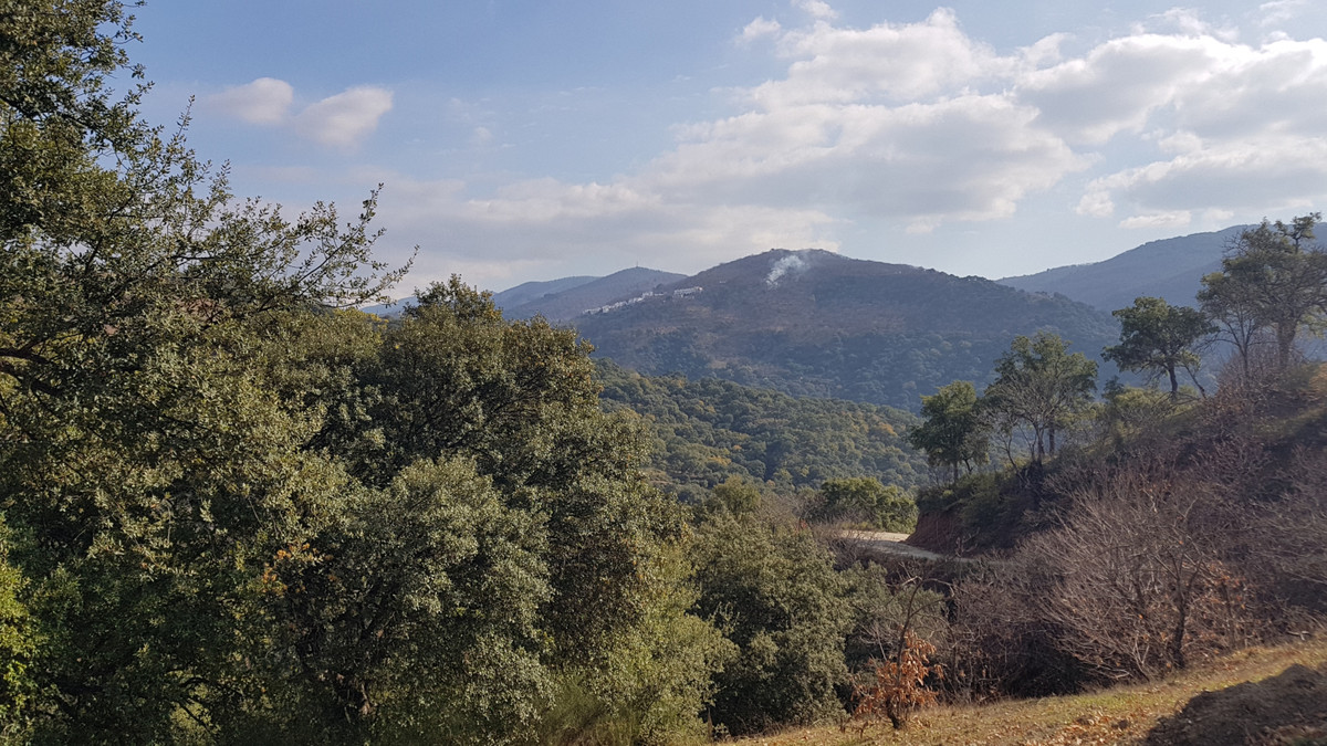 Beautiful rural farm with village house for sale in the Genal Valley , near Ronda, Marbella and San ,Spain