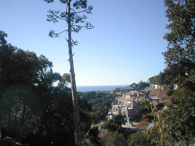 A 1000 m2 elevated west facing Plot in Elviria with sea views. Walking distance, or close drive to s, Spain