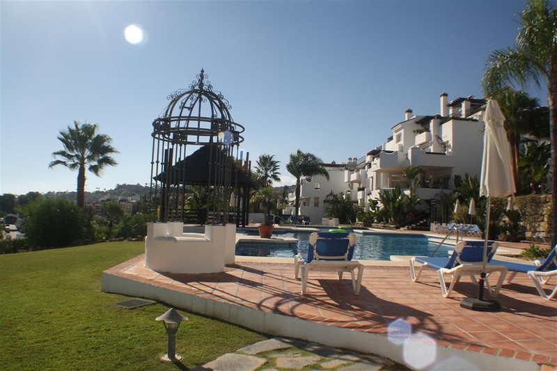 Apartments for sale in Nueva Andalucia 19